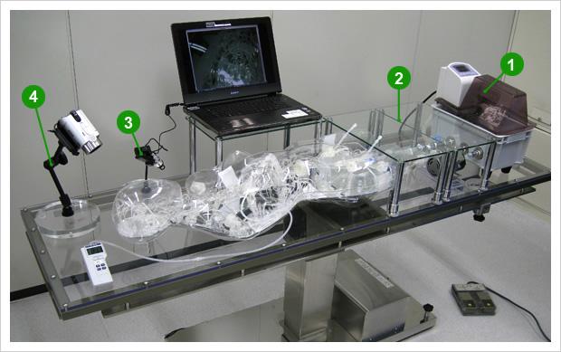 「イブ」は、カスタマイズ自由な手術シミュレータ。 血管構成をご選択いただけます。